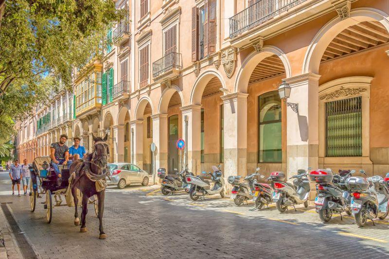 Entdeckungsreise nach Mallorca
